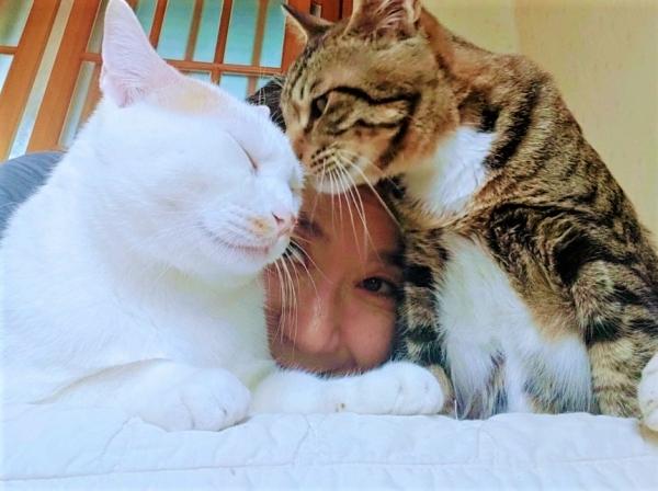 김미성 제주동물친구들 대표